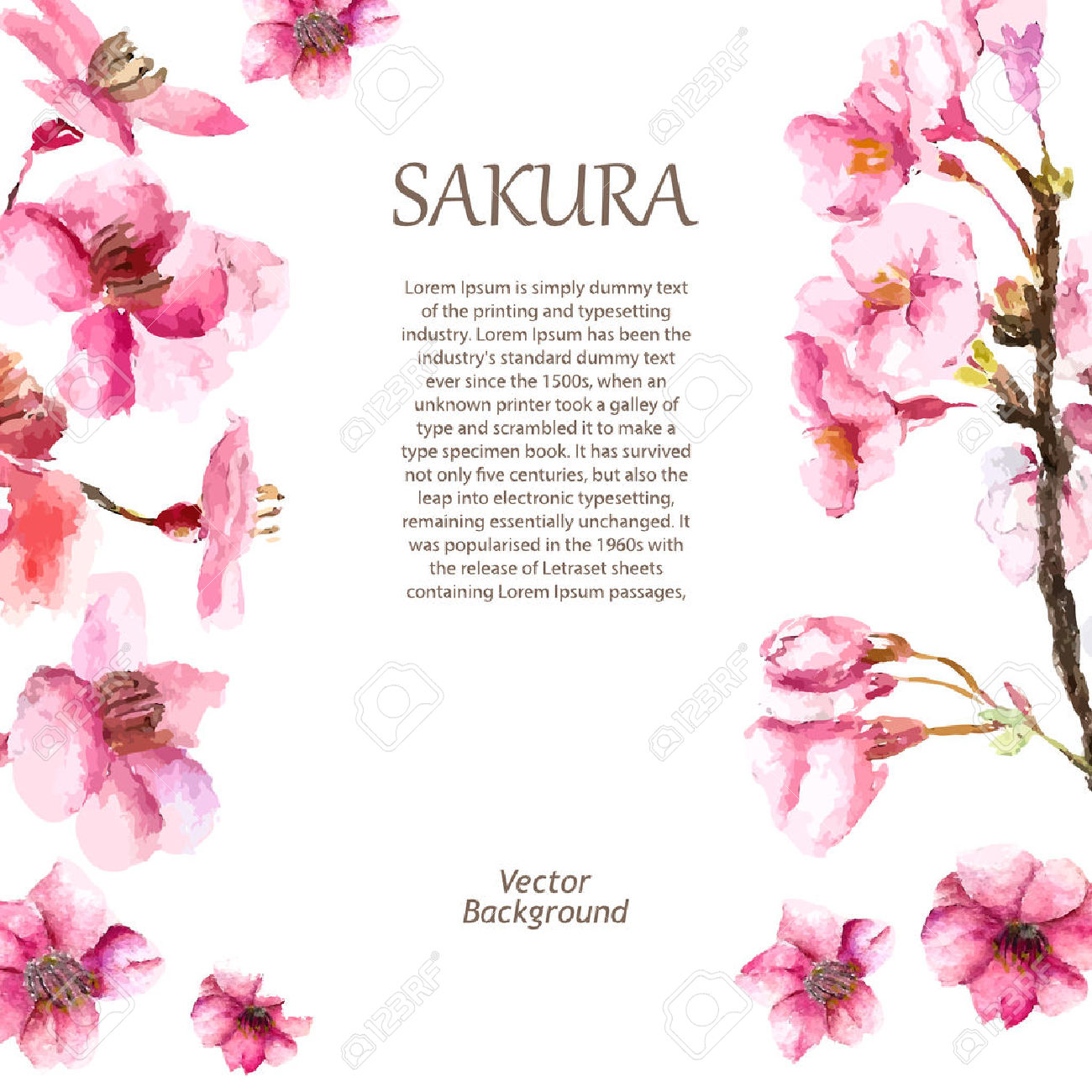 sakura fleur de cerisier du japon et des fleurs. Black Bedroom Furniture Sets. Home Design Ideas