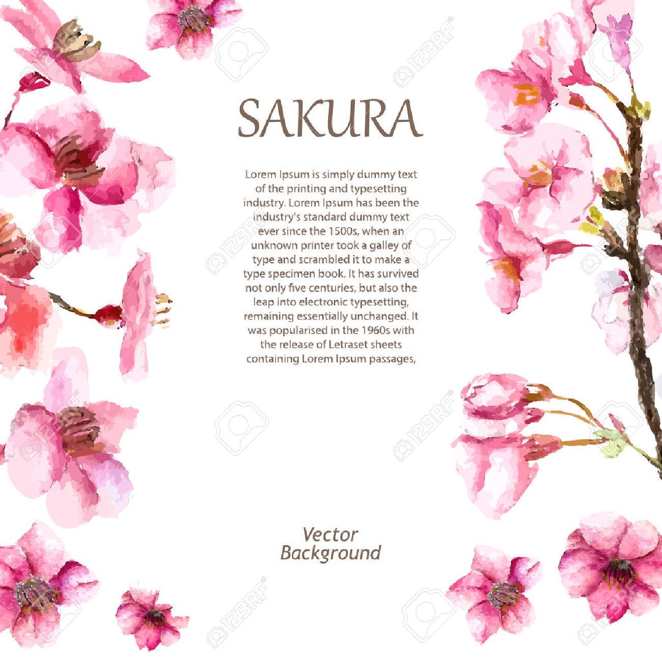 Sakura fleur de cerisier du japon et des fleurs - Cerisier en fleur dessin ...