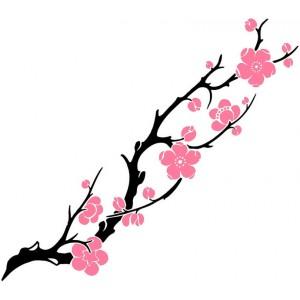 Dessin de fleur de cerisier japonais du japon et des fleurs - Dessin fleur de cerisier ...