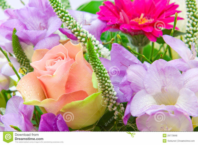 Carte anniversaire bouquet de fleurs gratuite du japon for Bouquet de fleurs pour 70 ans
