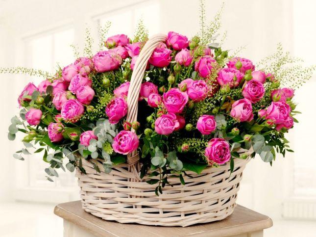 belle bouquet de fleurs du japon et des fleurs. Black Bedroom Furniture Sets. Home Design Ideas