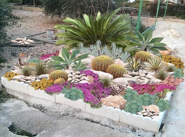 Jardin rocaille plantes - du japon et des fleurs