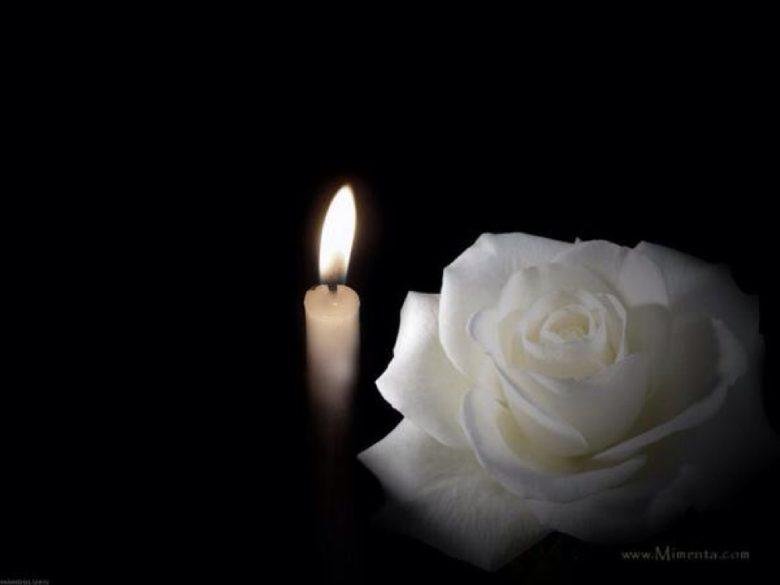 rose blanche deuil du japon et des fleurs. Black Bedroom Furniture Sets. Home Design Ideas